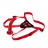Red Rider Adjustable Strap On With 7 Inch Dong - Harness & Dong Sets
